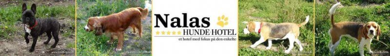 Nalas_03