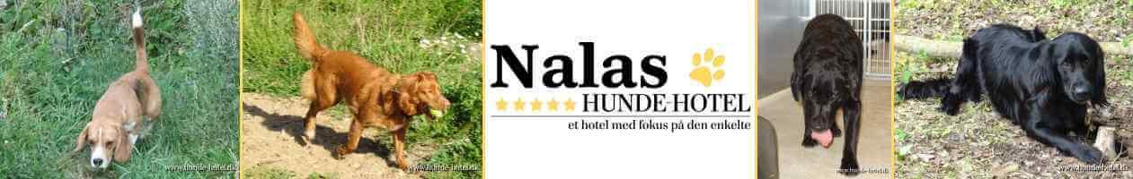 Nalas_04