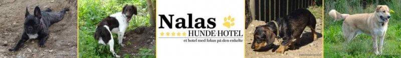 Nalas_05