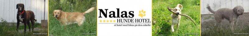 Nalas_06