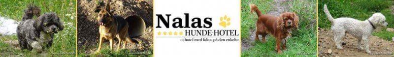 Nalas_08