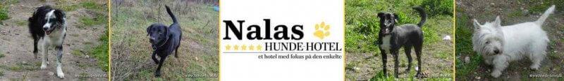 Nalas_09