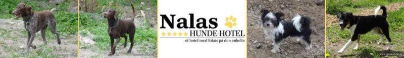 Nalas_10