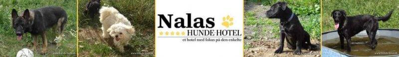Nalas_11