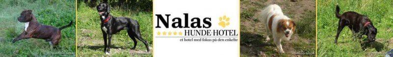 Nalas_12