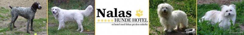 Nalas_14