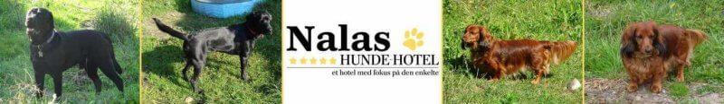 Nalas_15