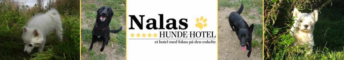 Nalas_24