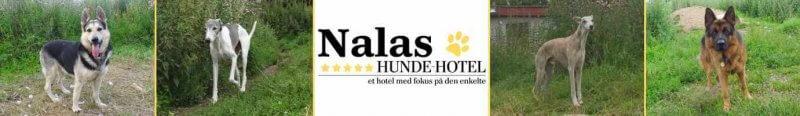 Nalas_30